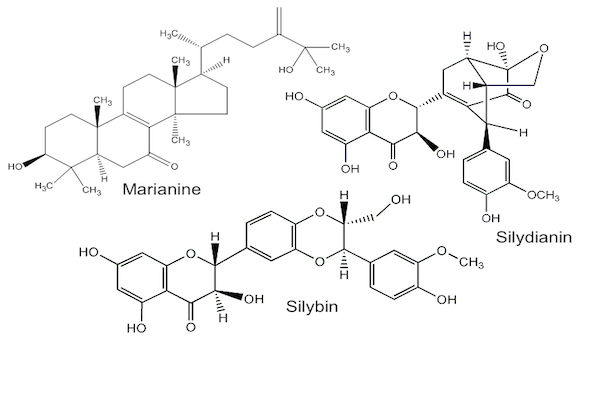 Milk Thistle compounds