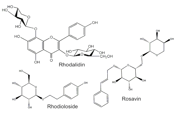 Rhodiola compounds