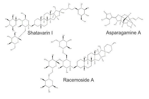 Shatavari compounds