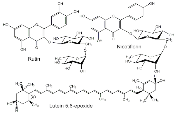 Stinging Nettle compounds