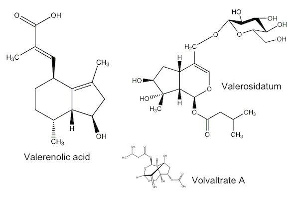 Valerian compounds